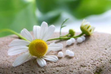 Homöopathie - Bachblüten, Schüsslersalze, Schlangenberg- Essenzen – die Heilkräfte der Natur